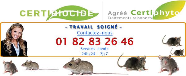 Punaises de Lit Neuville sur Oise 95000